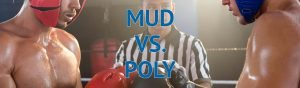 Blog Post Featured Image Mud vs Poly2 1280×375